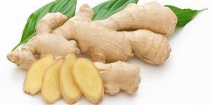Obat Encok Herbal
