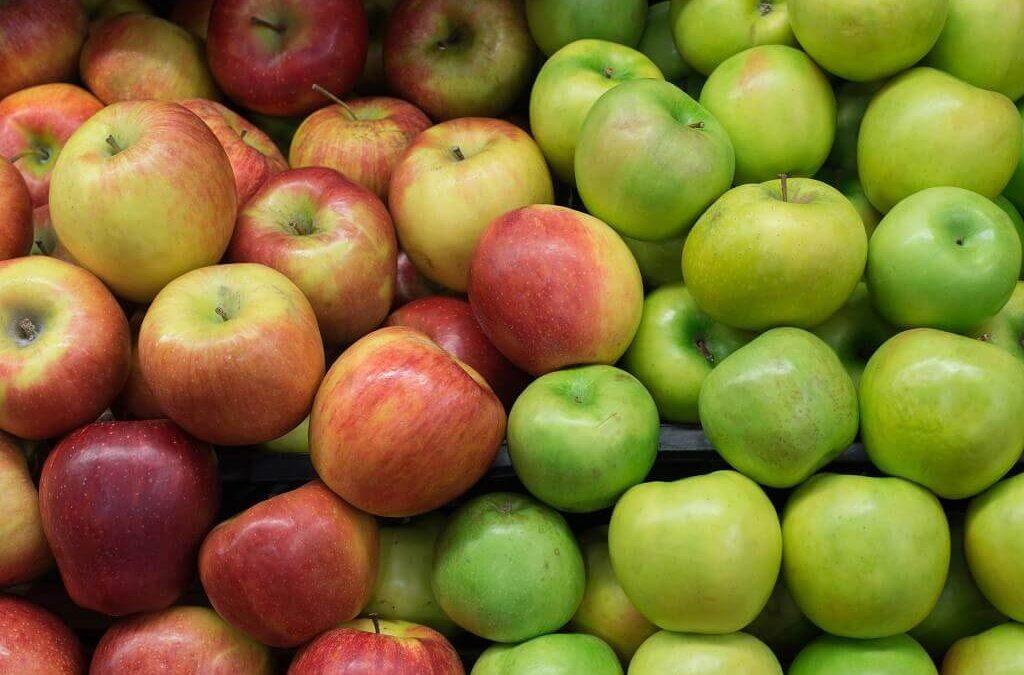 Pilihan Asupan Makanan untuk Penderita Asam Urat