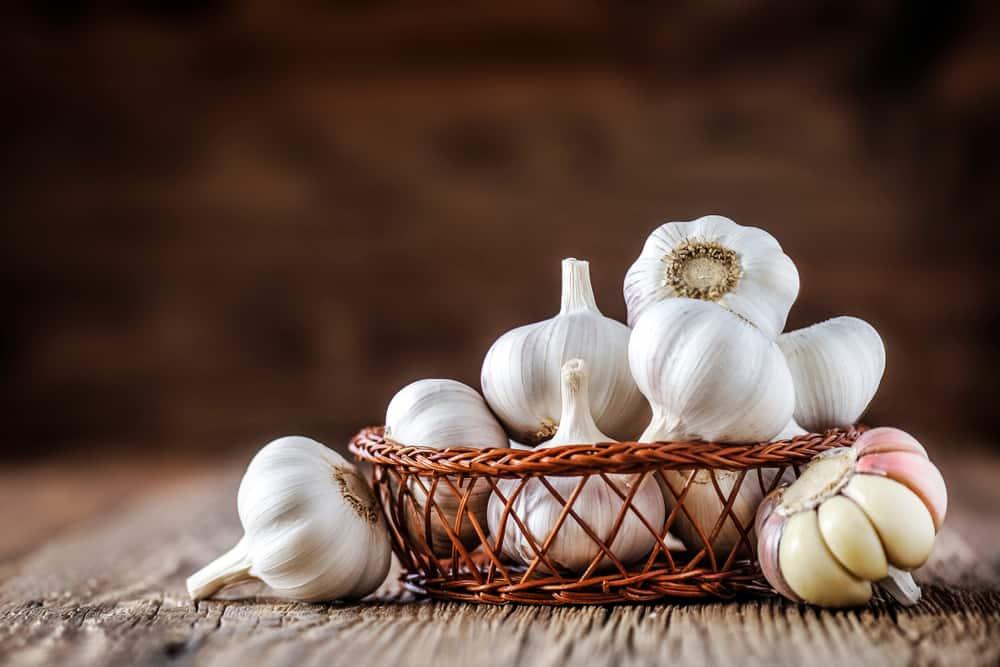 berapa lama menyembuhkan wasir dengan bawang putih