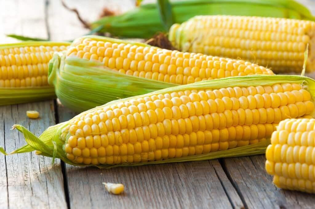 jagung pantangan asam urat