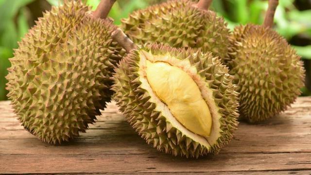 durian kolesterol asam urat